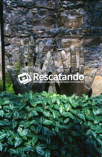 San Luis Potosí - Rescatando
